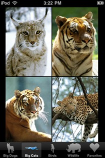 Animal Wallpapers iPhone app