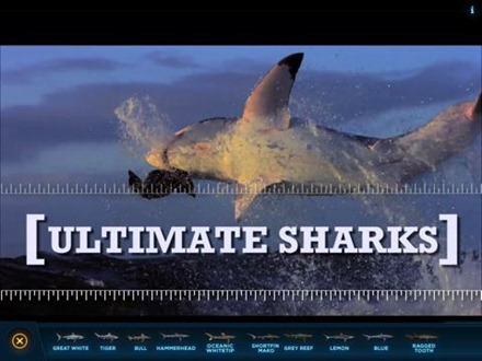 Ultimate Sharks app for iPad
