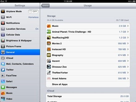 iPad Usage After