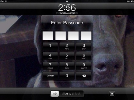 Lock Screen iPad Photoframe