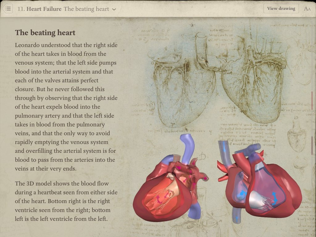 Review Leonardo Da Vinci Anatomy For Ipad Ipad Insight