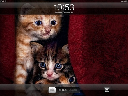 Kitties iPad lock screen
