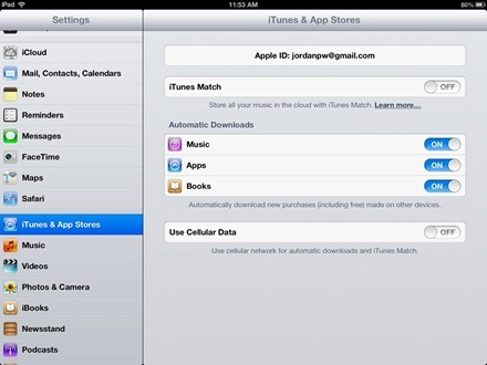 iPad Store Settings