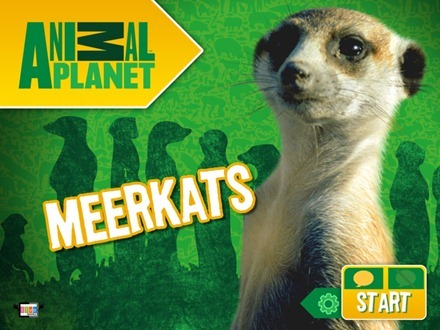 Meerkats Animal Planet iPad app