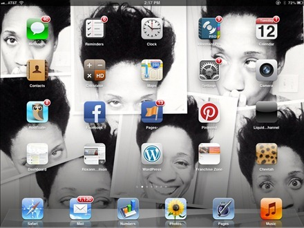 Roxanne Wlison iPad home screen